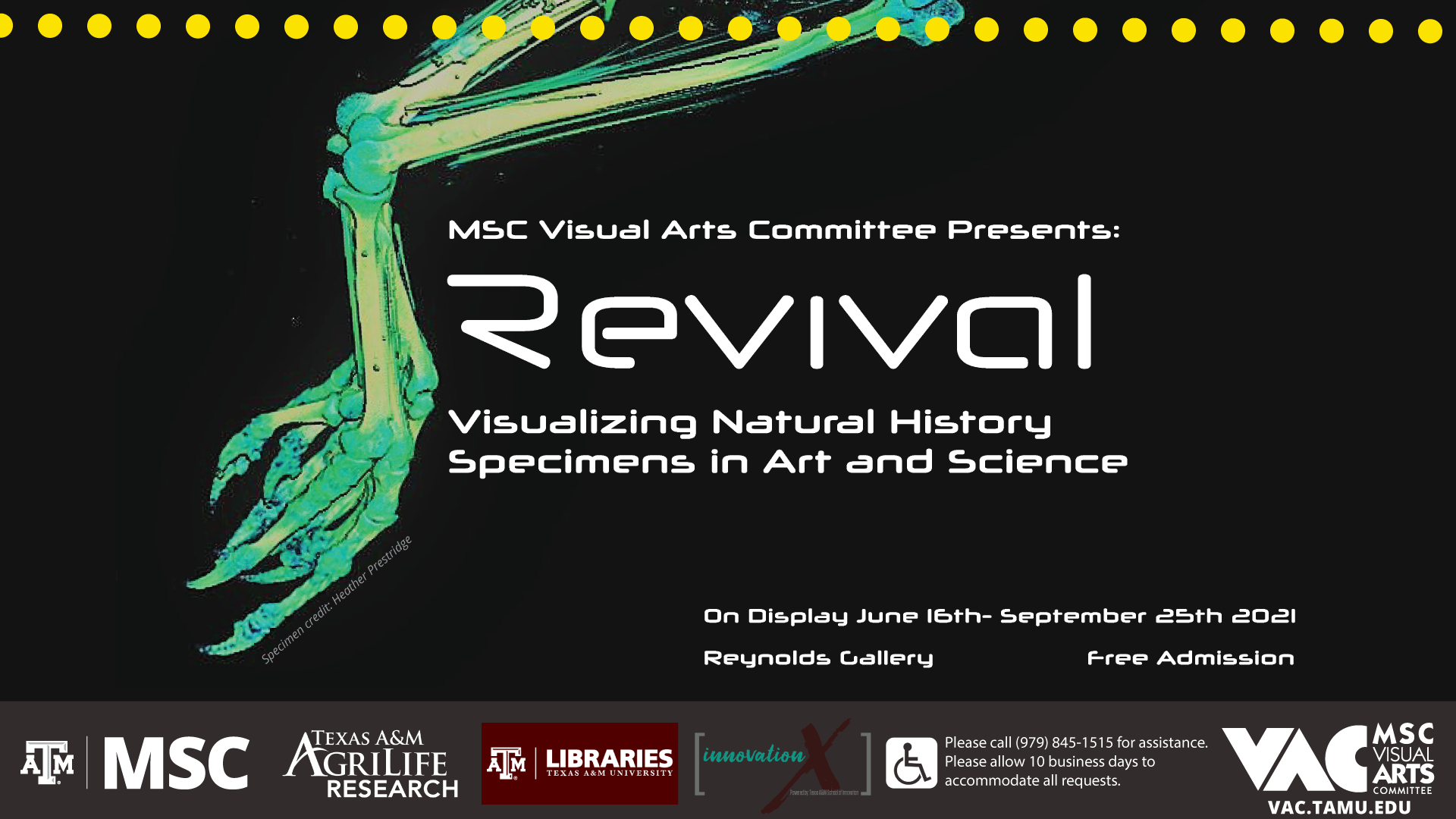 MSC Visual Arts Committee Presents: Revival, Visualizing Natural History Specimens in Art and Science. On Display June 16th to September 25th. 2021 at Reynolds Gallery. Free-Admission. Please call 979.845.1515 for assistance. Please allow 10 business days to accommodate all requests.